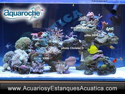 aquaroche-roca-artificial-acuario-piedra-ceramica-decoracion-filtracion-ornamentacion-pecera-salada