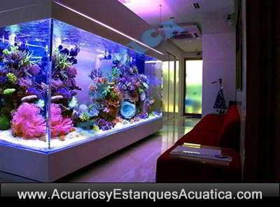 roca viva indonesia premium acuario marino 5kg acuarios