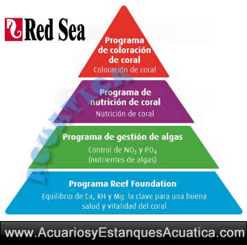 red-sea-reef-coral-care-program-test-piramide